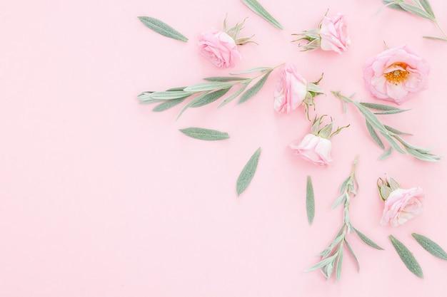 Mooie roze rozenhoofden op roze achtergrond. frame van bloem in pastelkleuren. bovenaanzicht