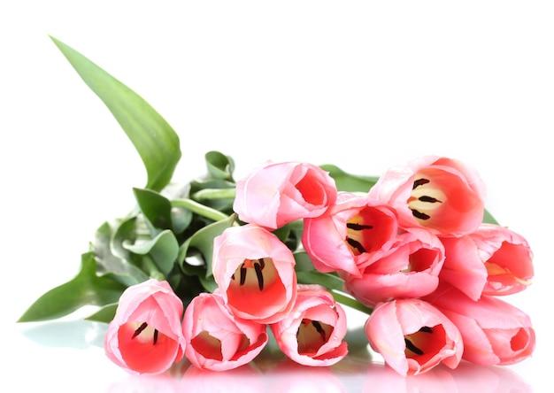 Mooie roze tulpen geïsoleerd op wit
