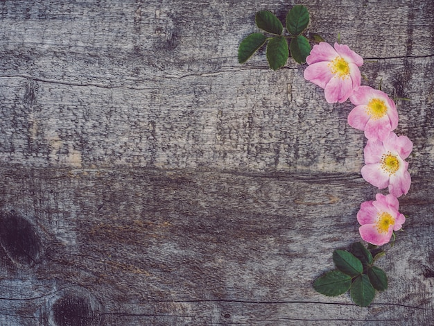 Mooie rozebotteltak met witte bloemen
