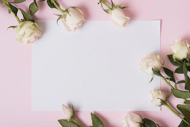 Mooie rozen op blanco papier tegen roze achtergrond