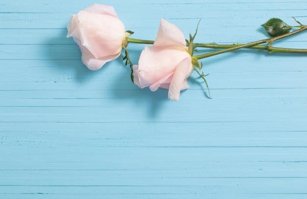 Mooie rozen op blauwe houten achtergrond