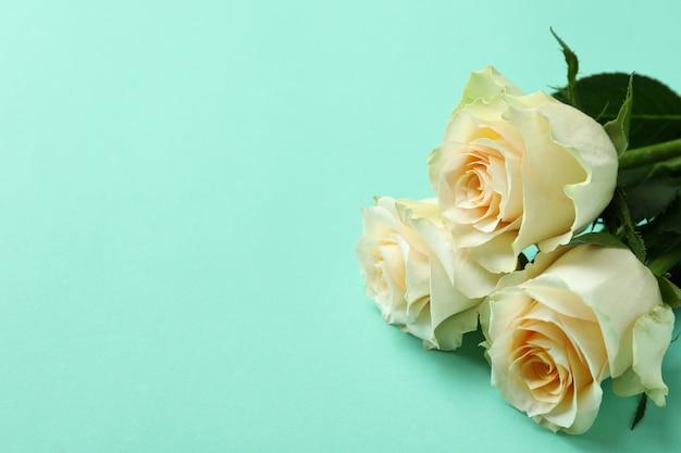 Mooie rozen op munt achtergrond