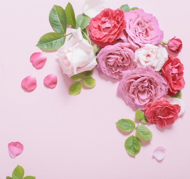 Mooie rozen op roze papieren achtergrond Premium Foto