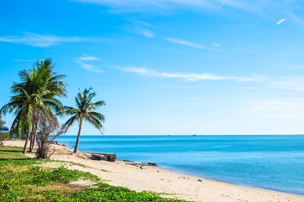 Mooie stranden en helder water in de zomer