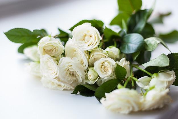 Mooie struik met witte rozen