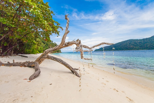 Mooie tropische paradijszee en blauwe hemel met wit zandstrand in thailand