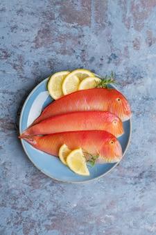 Mooie tropische rode zeevis pearly razorfish op een blauwe ondergrond. xyrichtys novacula, zeevruchten uit de middellandse zee.