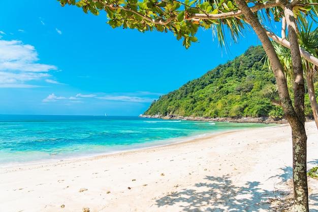 Mooie tropische strand overzeese oceaan met kokosnoot en andere boom rond witte wolk op blauwe hemel