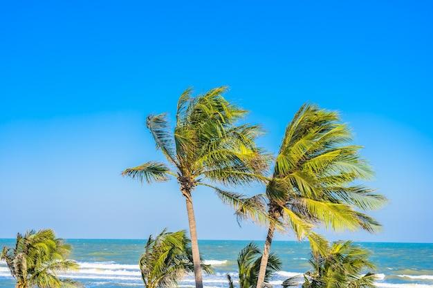 Mooie tropische strand zee oceaan met palmboom op blauwe hemel