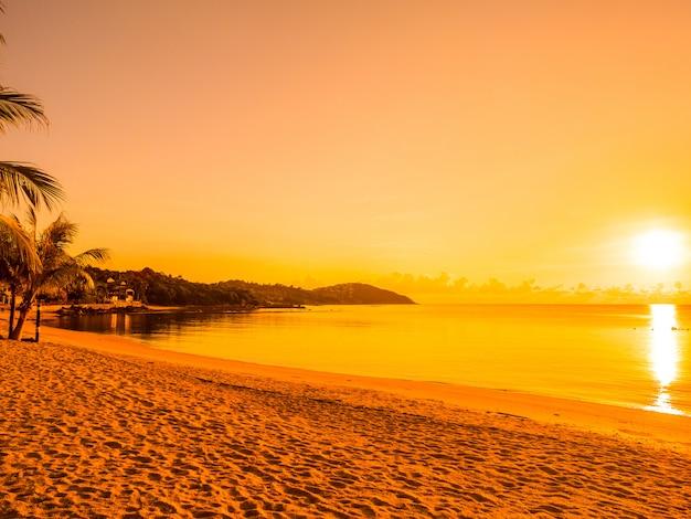 Mooie tropische strandoverzees en oceaan met kokosnotenpalm in zonsopgangtijd