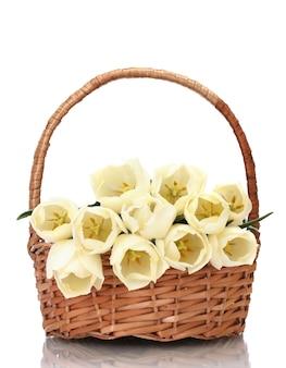 Mooie tulpen in mand geïsoleerd op wit