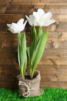 Mooie tulpen in pot op groen gras, op houten achtergrond