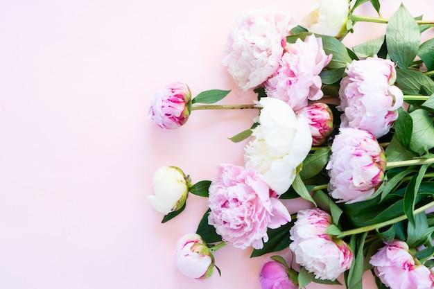 Mooie verse roze pioenroos bloemen en toppen op roze tafel
