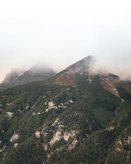 Mooie verticale opname van de top bedekt met bosbomen en mist bovenop
