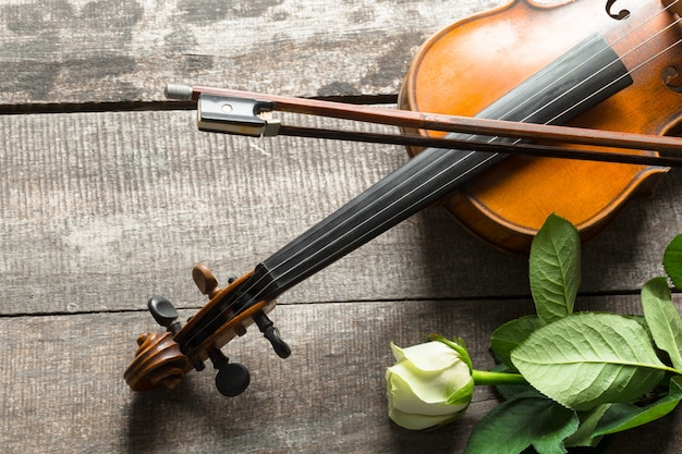 Mooie viool