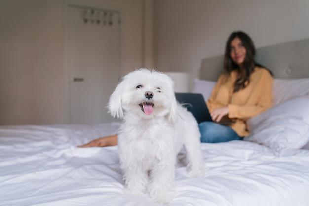Mooie vrouw die aan laptop thuis met haar hond werkt