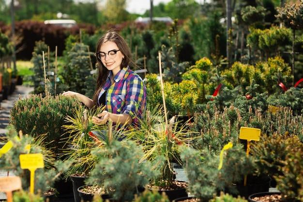 Mooie vrouw die en groene installaties voor de tuin kiest koopt.