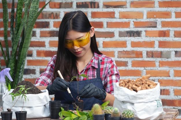Mooie vrouw die lacht tijdens het kweken van planten