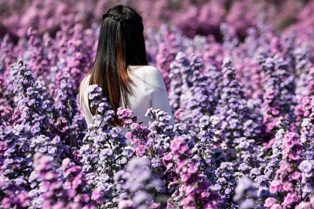 Mooie vrouw in mooie ochtendbloemen margaret in de tuin bloeit