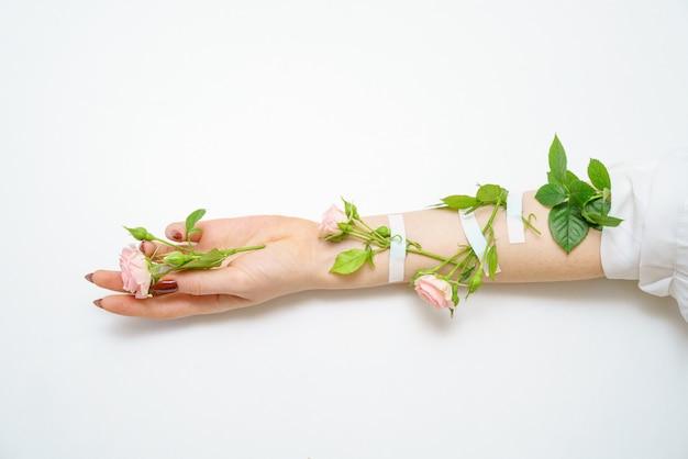 Mooie vrouwelijke hand met roze rozen