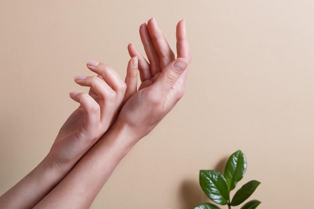Mooie vrouwelijke handen op een beige ondergrond met groene bladeren