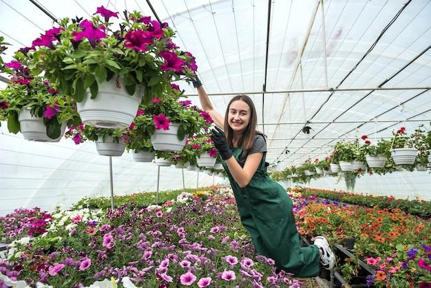 Mooie vrouwelijke kwekerij die met bloemen werkt in de mooie heldere kas. lente
