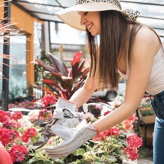 Mooie vrouwelijke tuinman die de bloem met schaar snijdt