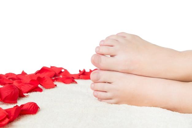 Mooie vrouwelijke voeten en rozenblaadjes