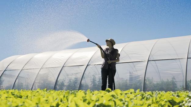 Mooie vrouwenboer irrigeert groene jonge zaailingen op het veld in de buurt van de serre.