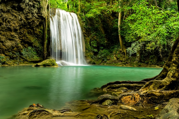Mooie waterval in groen bos