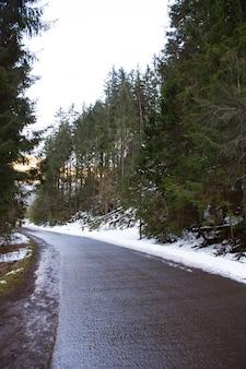 Mooie weg naar de zee oog in polen. de weg naar het bos. hoge tatra.