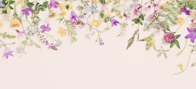 Mooie wilde bloemen op wit oppervlak