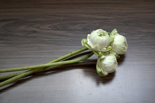 Mooie witte lotusbloemen voor het bidden van boeddha op houten achtergrond
