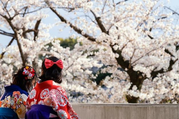 Mooie witte perzikboom bloesem