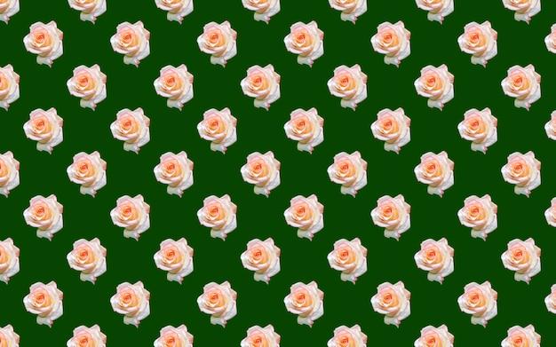 Mooie witte roze bloemen. bloeiende rozen naadloze patroon. bloemen natuurlijke achtergrond.