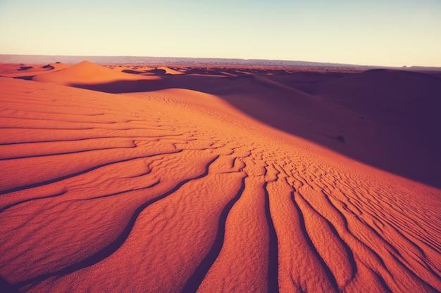 Mooie zandduinen in de woestijn bij zonsopgang. death valley, nevada, vs.