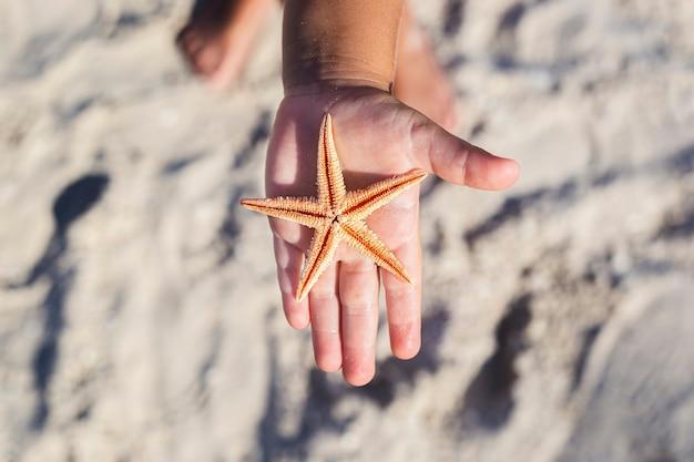 Mooie zeester op de palm van een kind op een zandstrand.