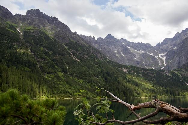 Mooie zomerse alpine bergmeer uitzicht met een val boom vooraan en wolken in de hemel. weerspiegeling van de berg in het water. kristal helder water. europa, alpen.