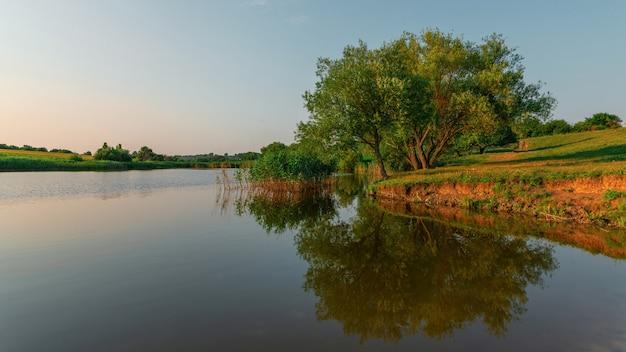 Mooie zomerse landschap met bomen reflectie in water panorama van zomeravond meer