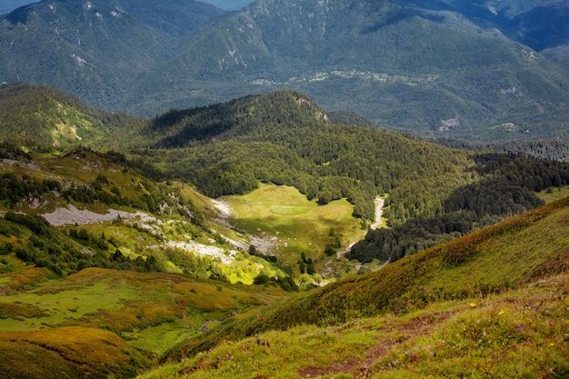 Mooie zomerse landschap van bergen met alpenweiden