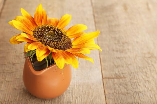 Mooie zonnebloem in werper op houten achtergrond