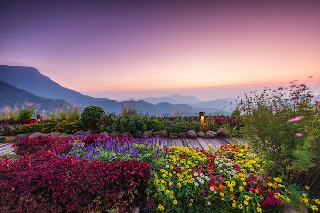 Mooie zonsopgang op de hoge berg in khao-kho, thailand.