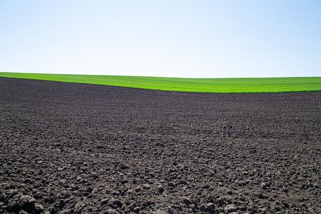 Mooie zwarte aarde velden in oekraïne. agrarische landschap