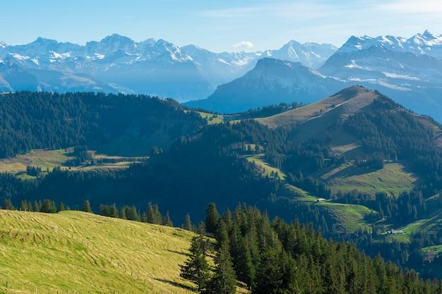 Mooie zwitserse berg in de zomer
