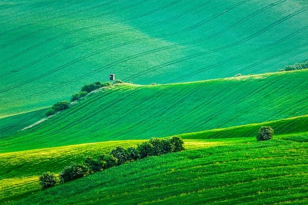 Moravisch glooiend landschap met jachttorenkeet