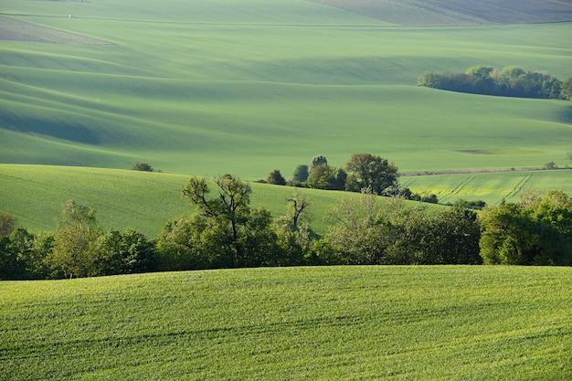 Moravisch toscanië - mooi de lentelandschap in zuid-moravië dichtbij kyjov-stad. tsjechische republiek - e