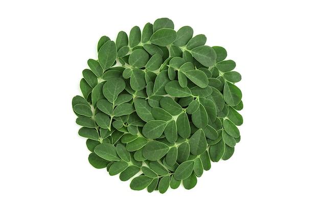 Moringa groene bladeren geïsoleerd op een witte achtergrond met uitknippad. bovenaanzicht, plat leggen.