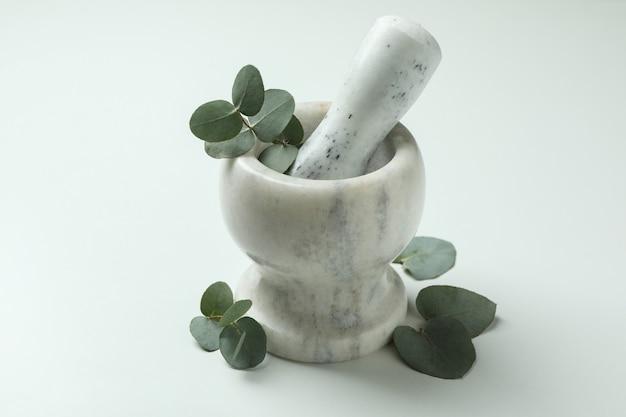 Mortel met eucalyptustakje op witte achtergrond Premium Foto