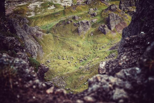 Mos in de rotsen en het gras