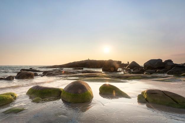 Mos op rots op het strand met zonsondergang